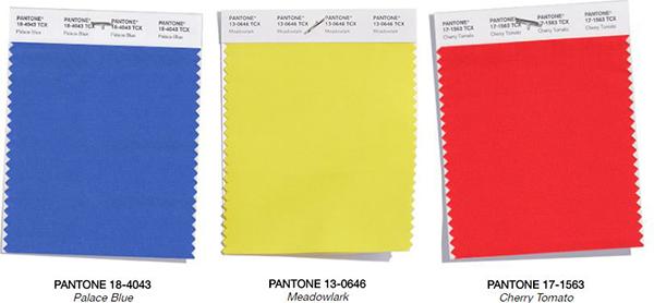 bold tones color palette
